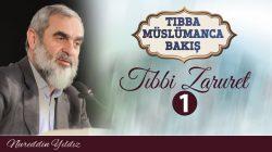 tibba14
